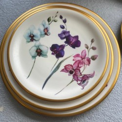 A set of 12 plates
